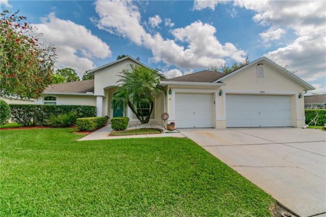 14609 Fetterbush Way, Tampa, FL 33626 (MLS #U8035886) :: The Light Team