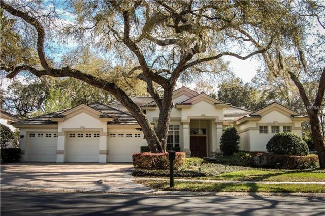 1520 Canopy Oaks Boulevard, Palm Harbor, FL 34683 (MLS #U8035912) :: Delgado Home Team at Keller Williams