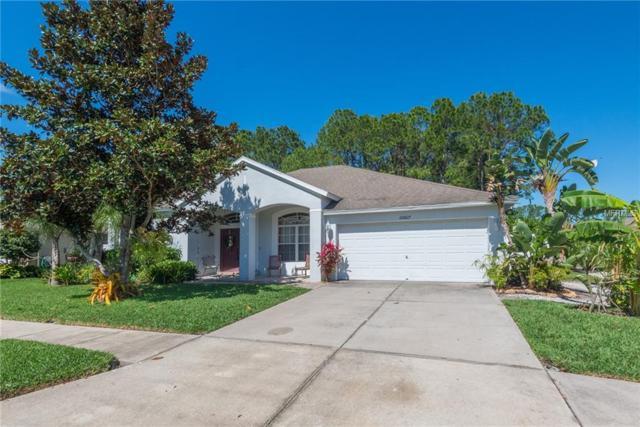 20827 Woodvale Lane, Land O Lakes, FL 34638 (MLS #U8036018) :: Jeff Borham & Associates at Keller Williams Realty