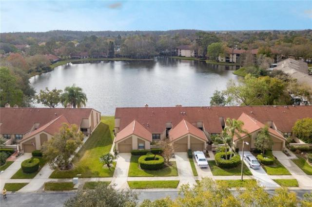 3966 Mermoor Drive, Palm Harbor, FL 34685 (MLS #U8036057) :: Lovitch Realty Group, LLC