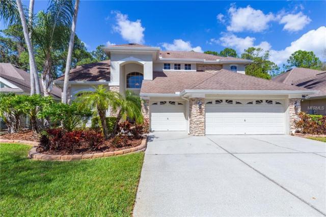 9822 Gretna Green Drive, Tampa, FL 33626 (MLS #U8036175) :: Jeff Borham & Associates at Keller Williams Realty