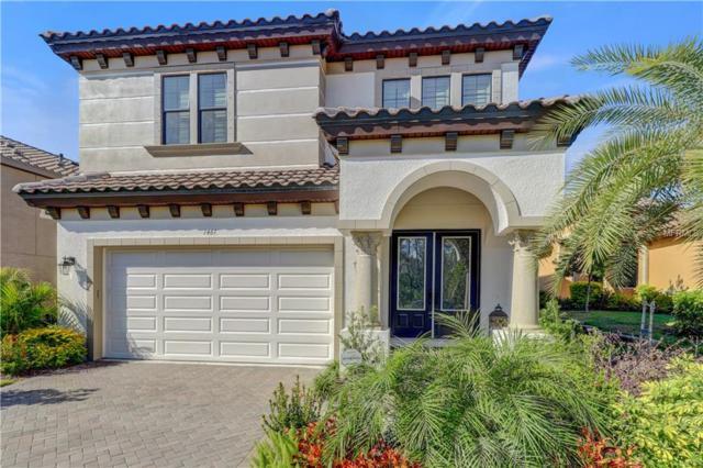 1461 Marinella Drive, Palm Harbor, FL 34683 (MLS #U8036408) :: Delgado Home Team at Keller Williams