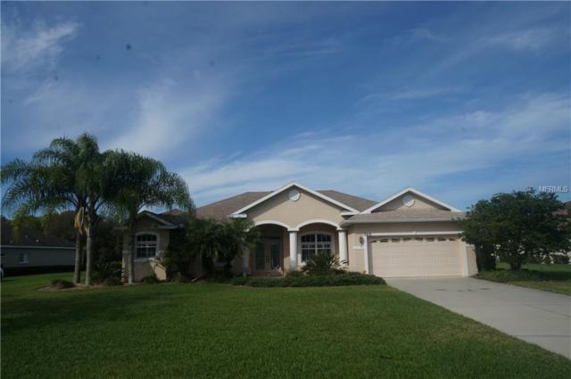 2519 155TH Avenue E, Parrish, FL 34219 (MLS #U8036584) :: Ideal Florida Real Estate