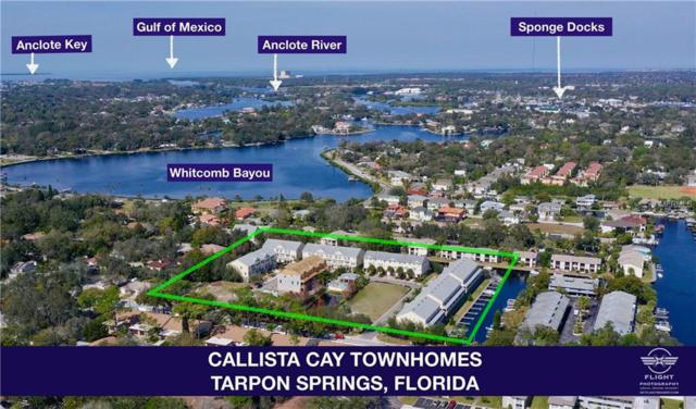 837 Callista Cay Loop #62, Tarpon Springs, FL 34689 (MLS #U8036794) :: Griffin Group