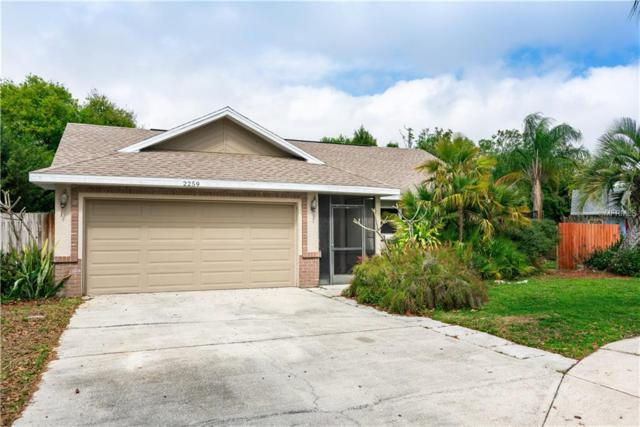 2259 Blue Tern Drive, Palm Harbor, FL 34683 (MLS #U8036828) :: The Edge Group at Keller Williams