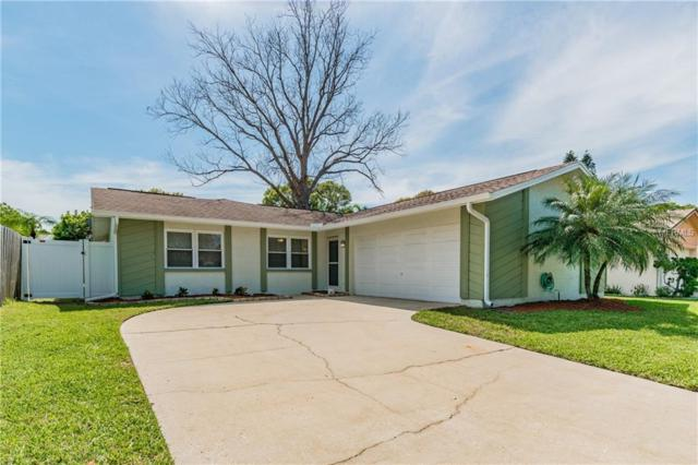 625 Kirkland Circle, Dunedin, FL 34698 (MLS #U8036918) :: Burwell Real Estate