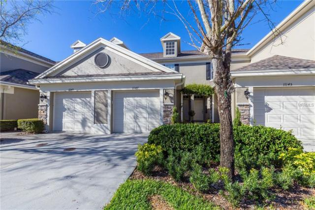 11147 Windsor Place Circle, Tampa, FL 33626 (MLS #U8036948) :: Jeff Borham & Associates at Keller Williams Realty