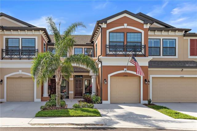11458 Crowned Sparrow Lane, Tampa, FL 33626 (MLS #U8037027) :: Griffin Group