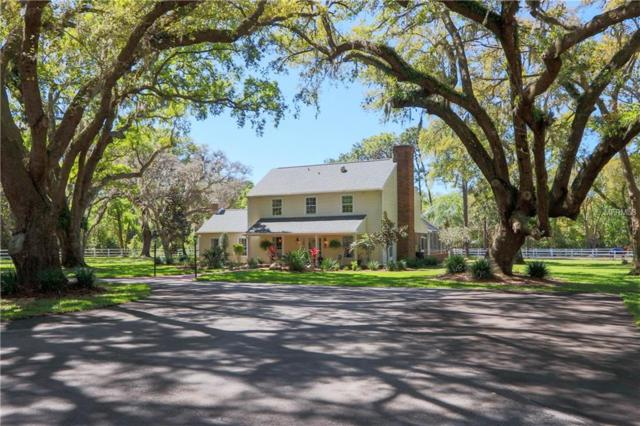 1478 Ridge Top Drive, Tarpon Springs, FL 34688 (MLS #U8037380) :: Medway Realty