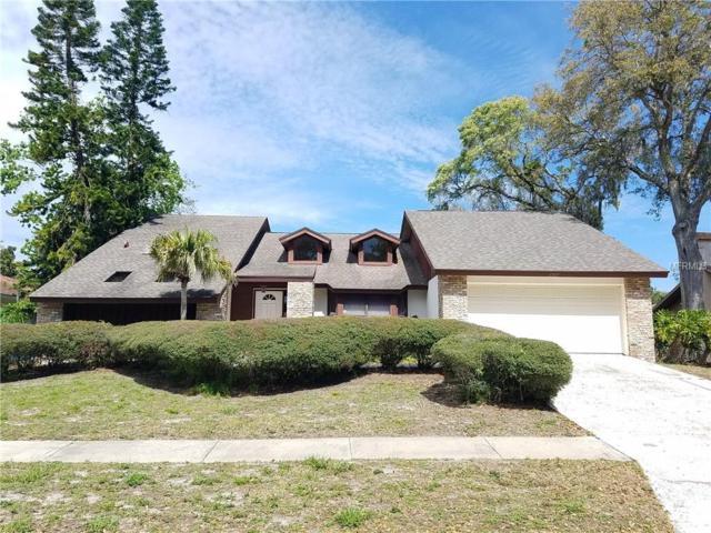 1377 Treetop Drive, Palm Harbor, FL 34683 (MLS #U8037477) :: Burwell Real Estate