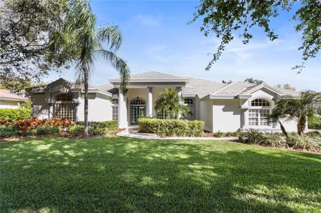 3535 Woodridge Place, Palm Harbor, FL 34684 (MLS #U8037528) :: Paolini Properties Group