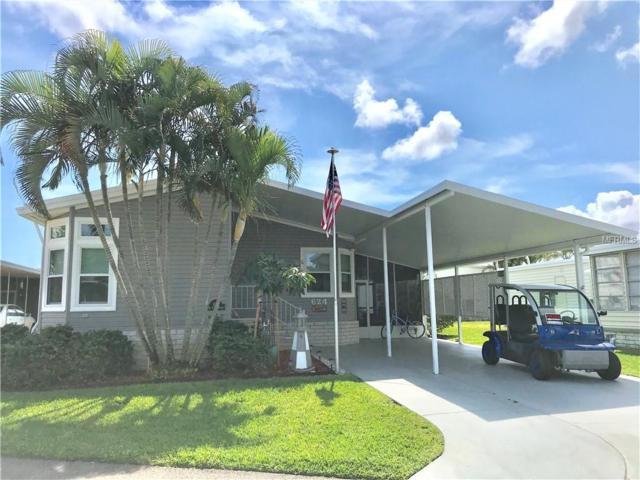 624 Mount Piney Avenue NE #703, St Petersburg, FL 33702 (MLS #U8037659) :: Lockhart & Walseth Team, Realtors