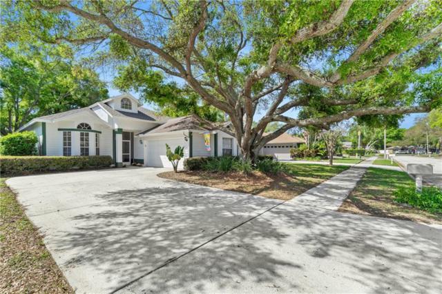 2829 Branch Creek Avenue, Clearwater, FL 33760 (MLS #U8037719) :: Bustamante Real Estate