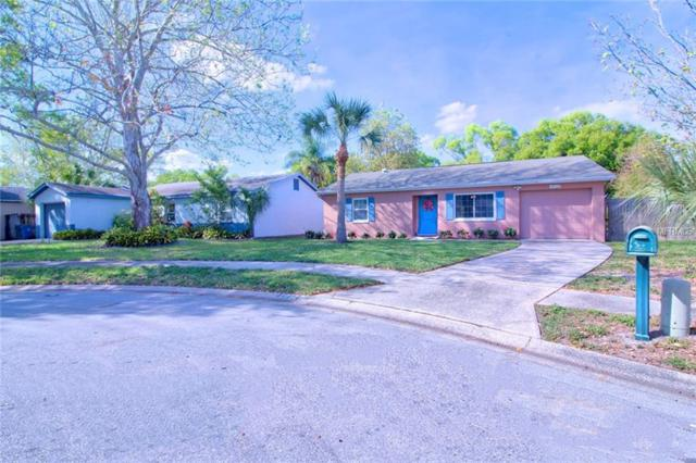1912 Montego Court, Oldsmar, FL 34677 (MLS #U8037761) :: Paolini Properties Group