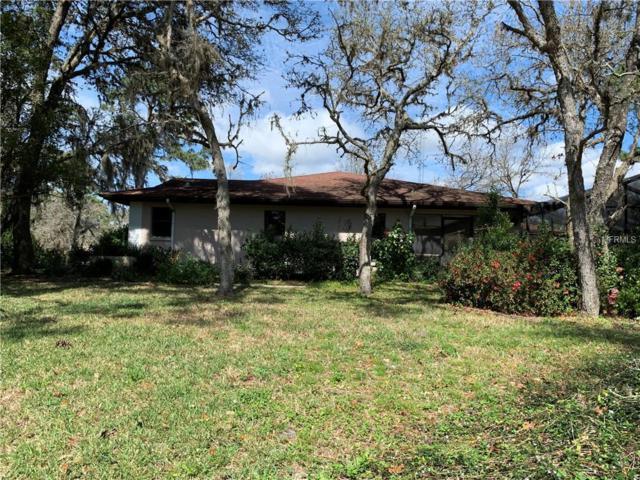 1 Graytwig Court N, Homosassa, FL 34446 (MLS #U8037773) :: Cartwright Realty