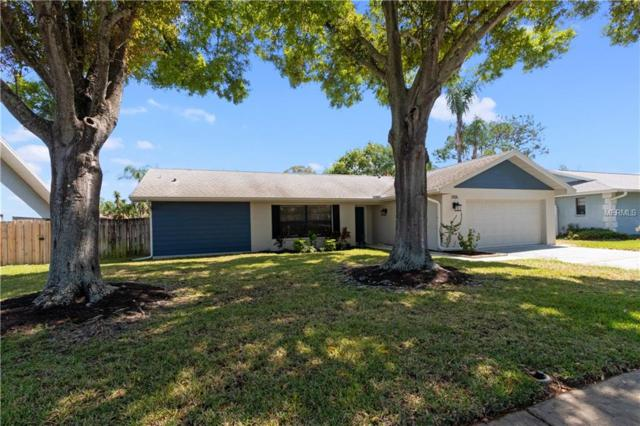 3106 Ashwood Lane, Safety Harbor, FL 34695 (MLS #U8037975) :: Charles Rutenberg Realty