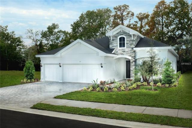 23 Concord Drive, Dunedin, FL 34698 (MLS #U8038147) :: Paolini Properties Group