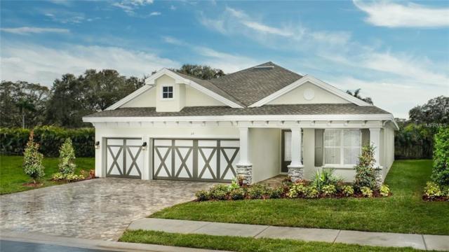 29 Concord Drive, Dunedin, FL 34698 (MLS #U8038177) :: Paolini Properties Group