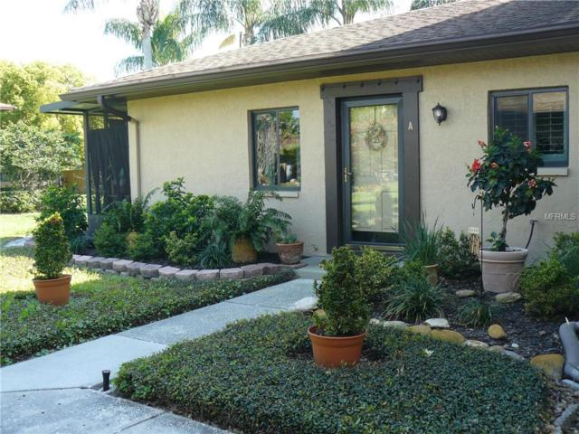 2933 Lichen Lane A, Clearwater, FL 33760 (MLS #U8038367) :: Mark and Joni Coulter | Better Homes and Gardens