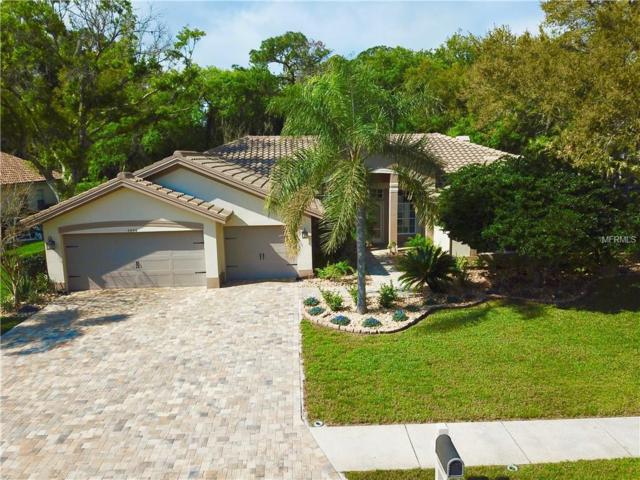 4994 Turtle Creek Trail, Oldsmar, FL 34677 (MLS #U8038378) :: Paolini Properties Group