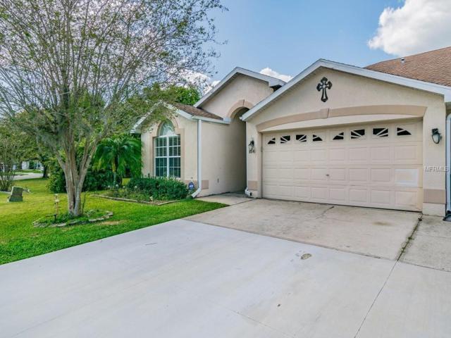 8641 Hawbuck Street, Trinity, FL 34655 (MLS #U8038387) :: Delgado Home Team at Keller Williams