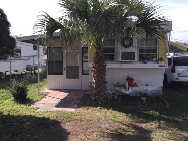 38420 Gaines Street, Zephyrhills, FL 33542 (MLS #U8038405) :: The Duncan Duo Team