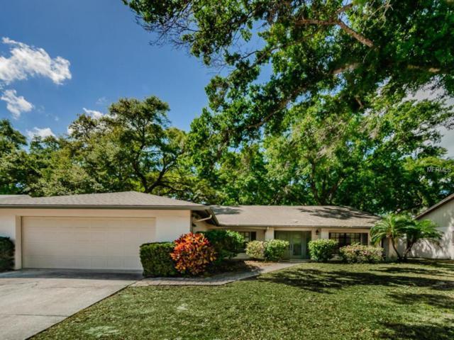 297 Arbor Drive E, Palm Harbor, FL 34683 (MLS #U8038478) :: Jeff Borham & Associates at Keller Williams Realty