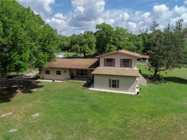 4902 Five Acre Road, Plant City, FL 33565 (MLS #U8038644) :: Jeff Borham & Associates at Keller Williams Realty