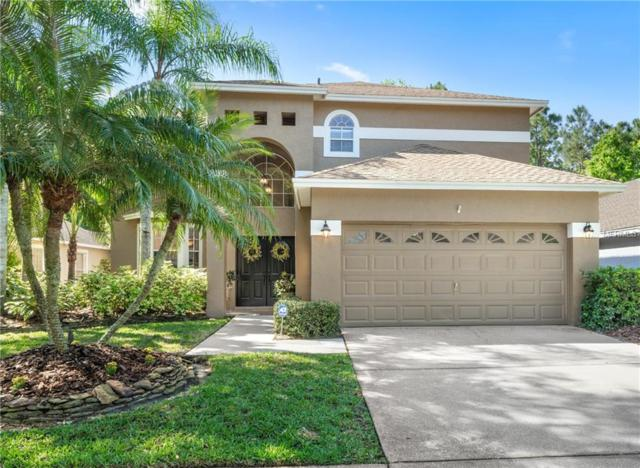 11836 Lancashire Drive, Tampa, FL 33626 (MLS #U8038728) :: Gate Arty & the Group - Keller Williams Realty