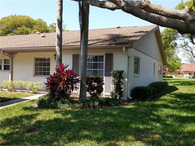2465 Northside Drive #2206, Clearwater, FL 33761 (MLS #U8038757) :: Lockhart & Walseth Team, Realtors