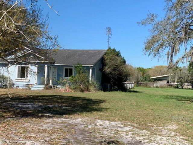 12811 Tyler Run Avenue, Odessa, FL 33556 (MLS #U8038776) :: Jeff Borham & Associates at Keller Williams Realty