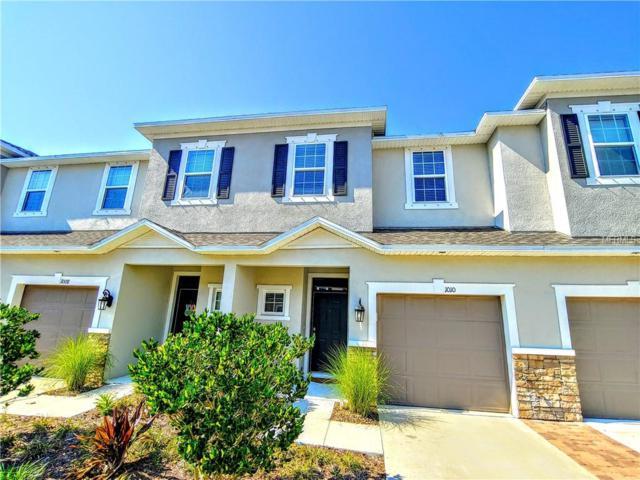 1010 Vineyard Lane, Oldsmar, FL 34677 (MLS #U8038878) :: Cartwright Realty