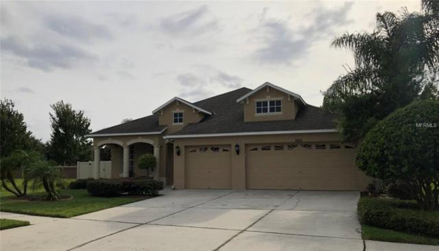 3003 Downan Point Drive, Land O Lakes, FL 34638 (MLS #U8038951) :: Jeff Borham & Associates at Keller Williams Realty