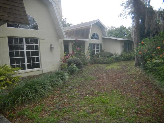 1570 Michigan Boulevard, Dunedin, FL 34698 (MLS #U8038979) :: Jeff Borham & Associates at Keller Williams Realty
