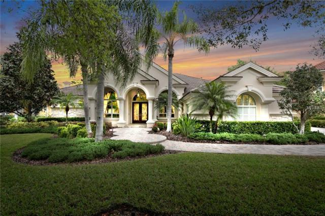2610 Hawks Landing Boulevard, Palm Harbor, FL 34685 (MLS #U8038986) :: Delgado Home Team at Keller Williams