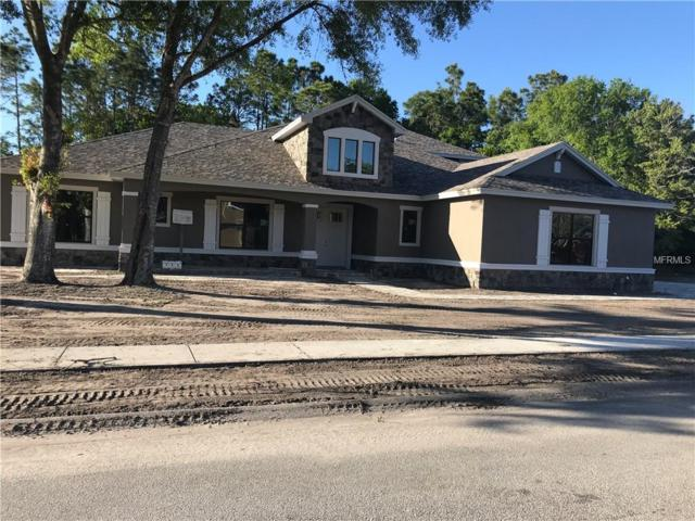 12815 Eagles Entry Drive, Odessa, FL 33556 (MLS #U8039130) :: Griffin Group