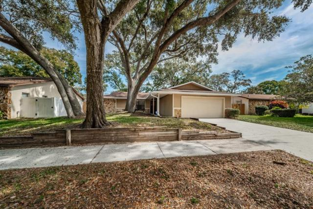 1835 Willow Oak Drive, Palm Harbor, FL 34683 (MLS #U8039315) :: Delgado Home Team at Keller Williams