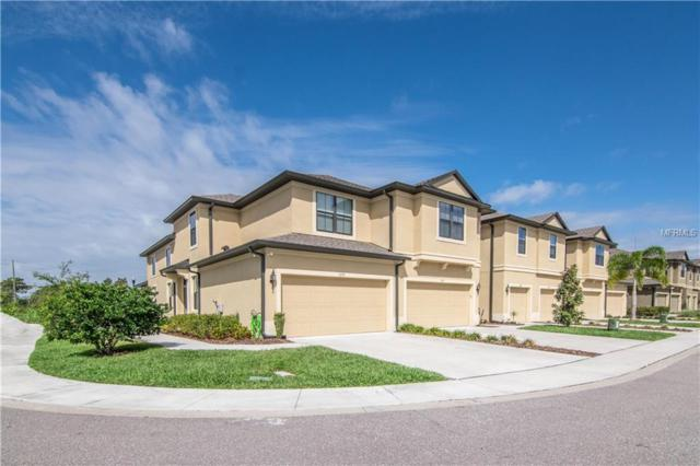 5171 Bay Isle Circle, Clearwater, FL 33760 (MLS #U8039411) :: Cartwright Realty