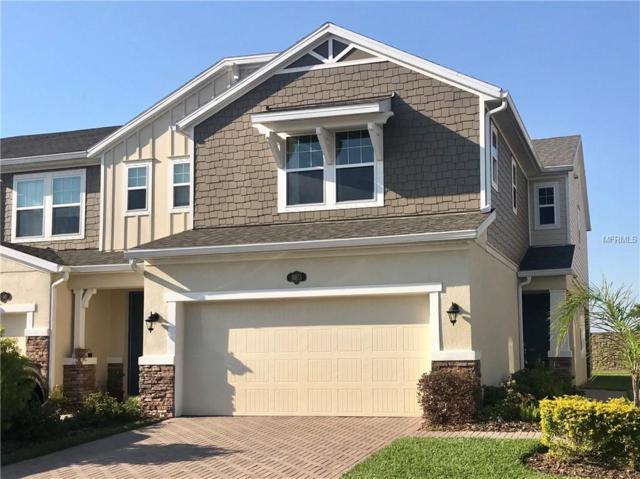 18855 Ulmus Street, Lutz, FL 33558 (MLS #U8039437) :: Baird Realty Group