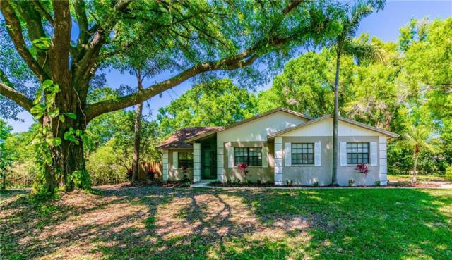 22373 Stillwood Drive, Land O Lakes, FL 34639 (MLS #U8039460) :: Griffin Group