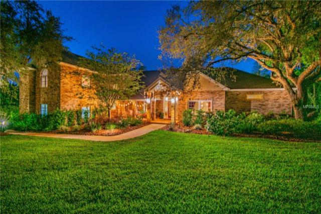 877 Cypress Lakeview Court, Tarpon Springs, FL 34688 (MLS #U8039567) :: Mark and Joni Coulter | Better Homes and Gardens