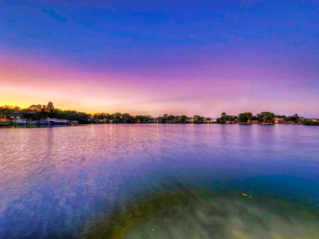 812 Bayshore Drive, Tarpon Springs, FL 34689 (MLS #U8039611) :: Mark and Joni Coulter | Better Homes and Gardens