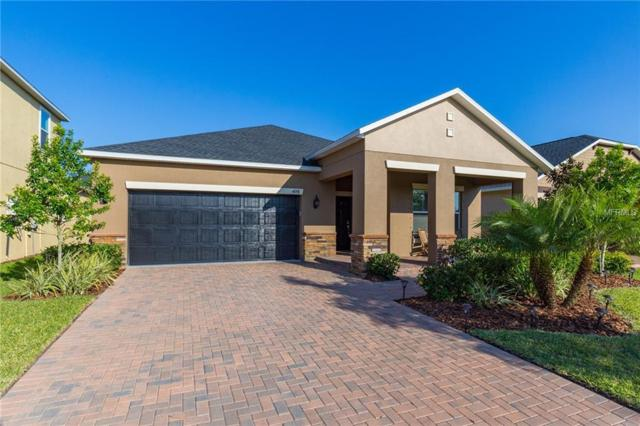 4098 Crayford Court, Land O Lakes, FL 34638 (MLS #U8039645) :: Cartwright Realty