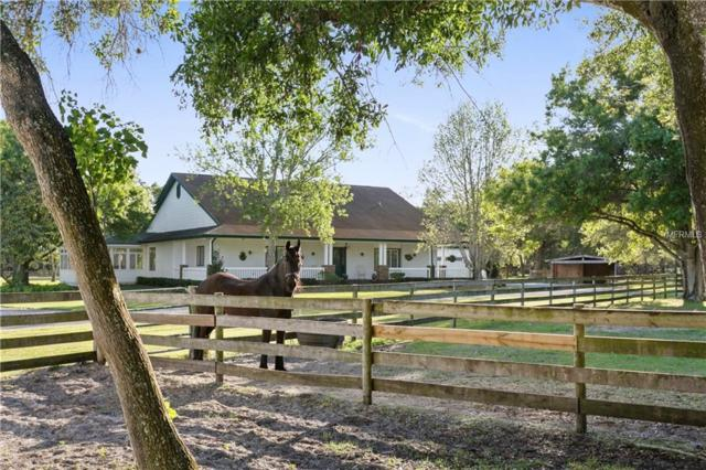6200 90TH Avenue N, Pinellas Park, FL 33782 (MLS #U8039759) :: Armel Real Estate