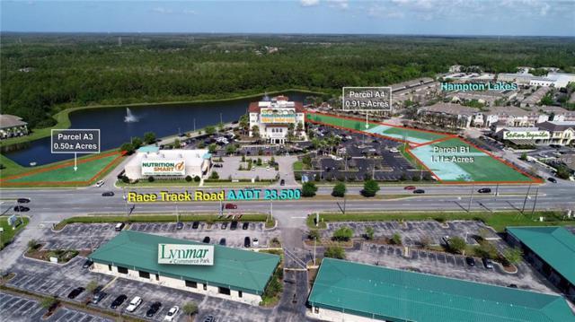Tampa, FL 33626 :: Cartwright Realty
