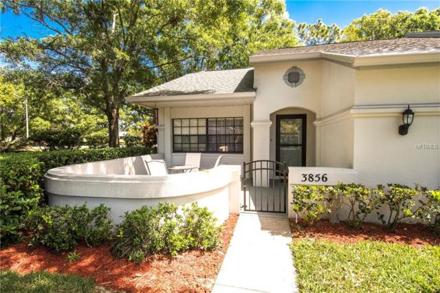 3856 Goldfinch Court, Palm Harbor, FL 34685 (MLS #U8039957) :: Baird Realty Group