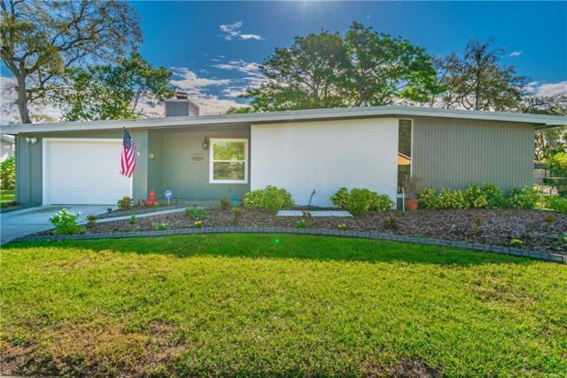 10603 Coquita Lane, Tampa, FL 33618 (MLS #U8040005) :: Delgado Home Team at Keller Williams
