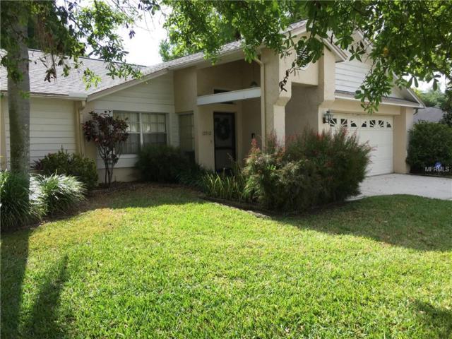2912 Lahlor Lane, Palm Harbor, FL 34684 (MLS #U8040265) :: Andrew Cherry & Company