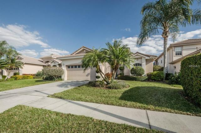 4368 Live Oak Boulevard, Palm Harbor, FL 34685 (MLS #U8040717) :: Delgado Home Team at Keller Williams