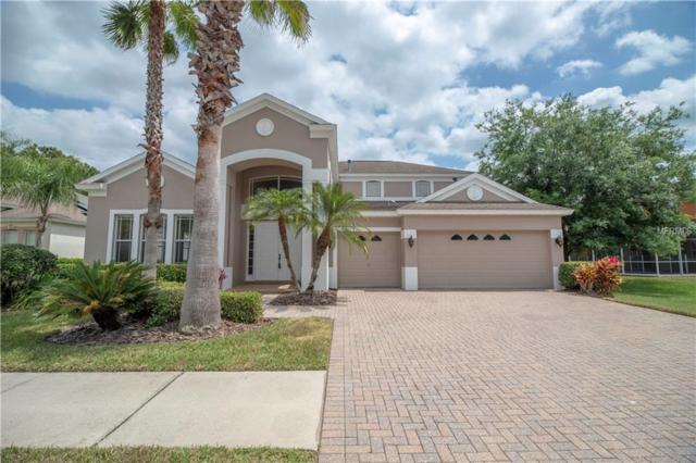10436 Canary Isle Drive, Tampa, FL 33647 (MLS #U8040783) :: Team Bohannon Keller Williams, Tampa Properties